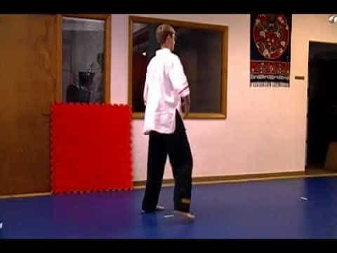 6 Point Kung Fu Orange Sash–Technique Overview