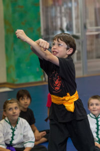 Group shows the benefits of martial arts for kids