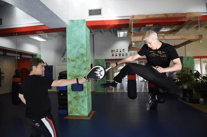 Kung Fu Jumping Roundhouse Kick